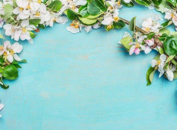 Цветя-Фототапет Пролетни цветове