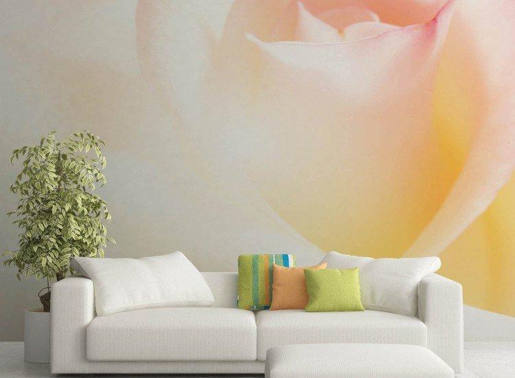 Цветя-Фототапет Нежност