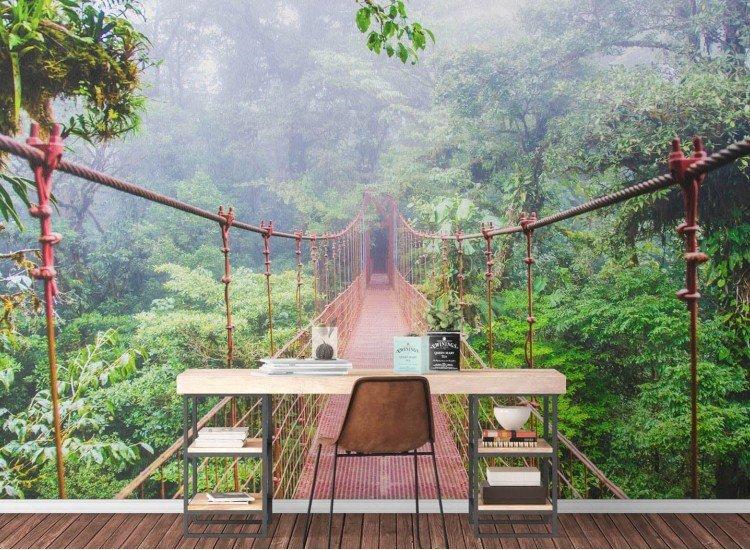 Пейзажи и природа-Фототапет Монтеверде Коста Рика