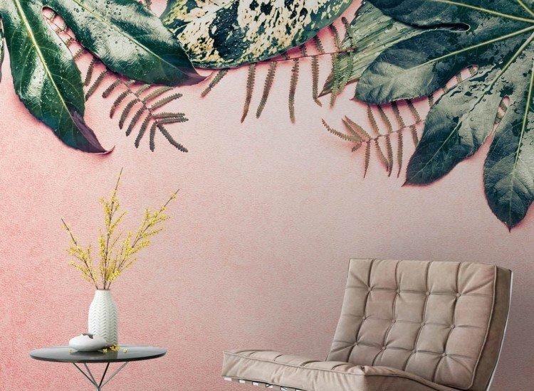 Растения-Фототапет Листа върху пастелен фон
