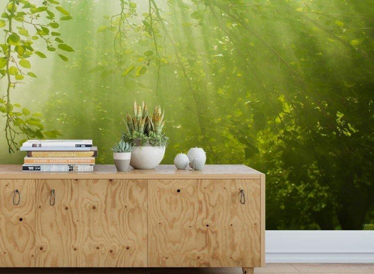 Растения-Фототапет Горски клони