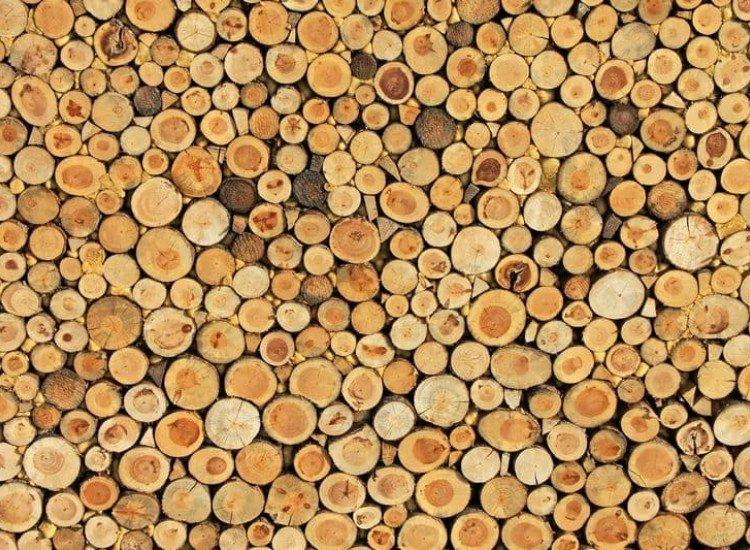 Текстури-Фототапет Дървесна текстура
