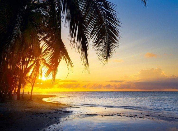 Морски и тропически-Фототапет Залез под палмата