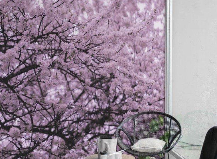 Растения-Фототапет Цъфтящи дървета
