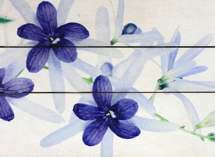 Цветя-Фототапет Лилави цветове