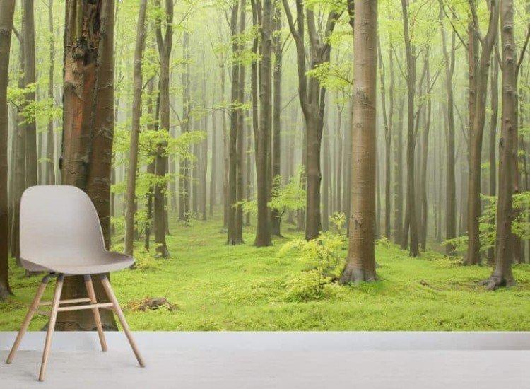 Пейзажи и природа-Фототапет Свежа гора