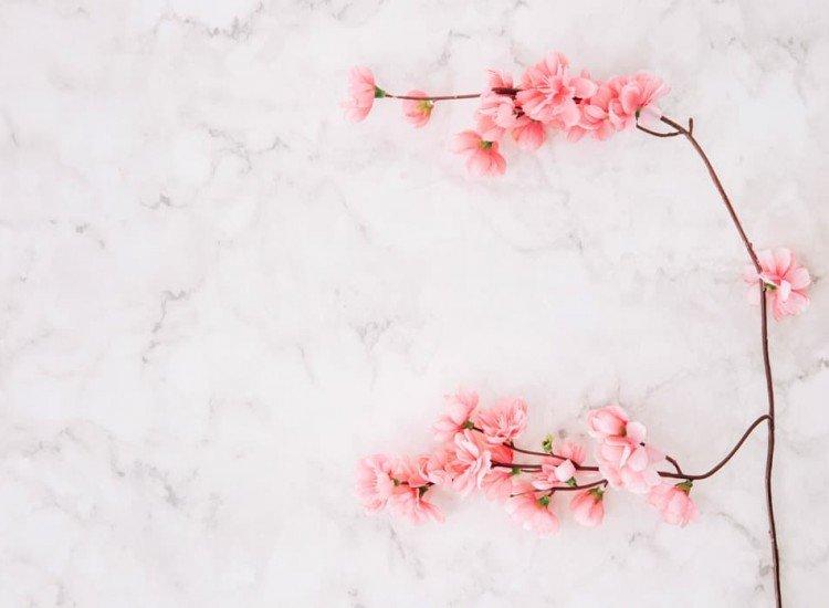 Цветя-Фототапет Цветя върху мрамор