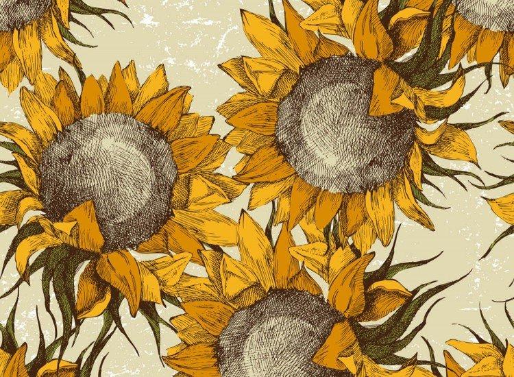 Растения-Фототапет Слънчогледи