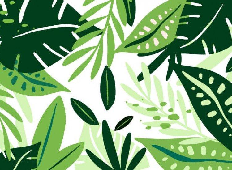 Растения-Фототапет Свежи листа