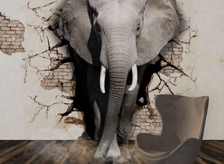 Фототапет 3D Слон