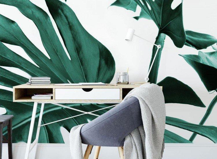 Растения-Фототапет Листа