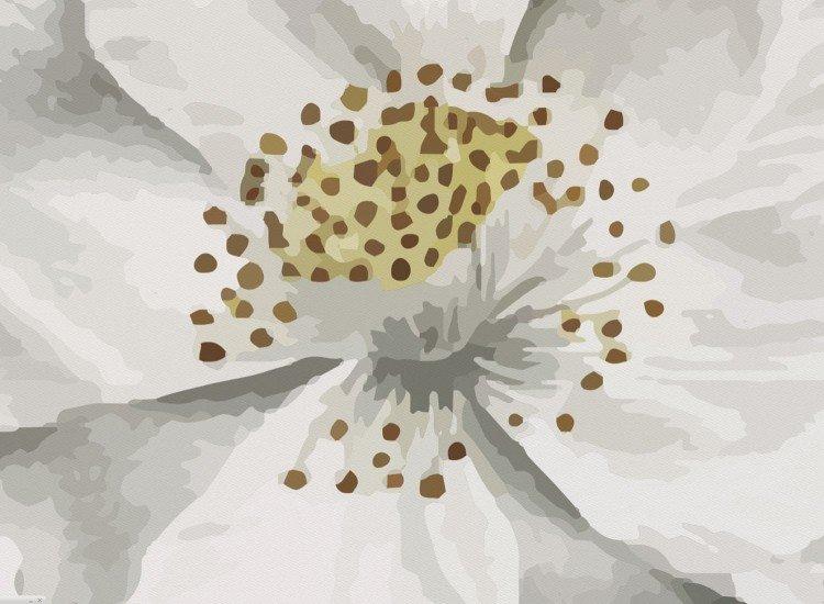 Цветя-Фототапет Бял дървен фон с цветя