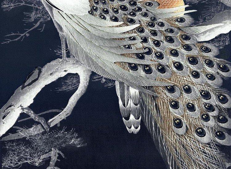 Животни и дива природа-Фототапет Два пауна на клон