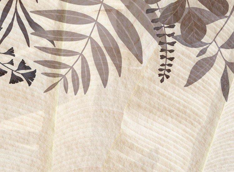 Растения-Фототапет Листа върху бежов цимент