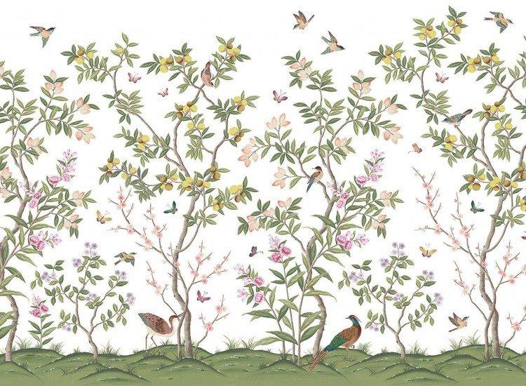 Растения-Фототапет Цитрусови дървета