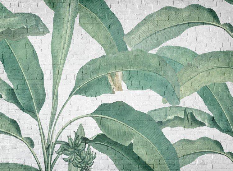 Растения-Фототапет Листа върху тухлена стена