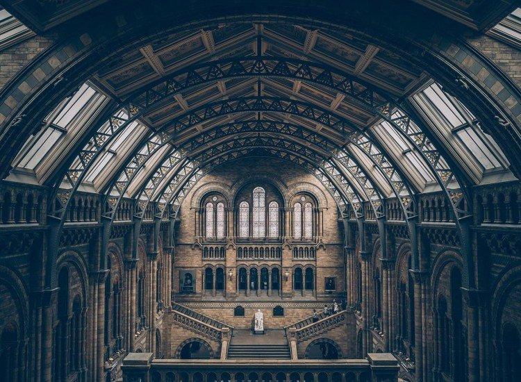 Сгради и забележителности-Фототапет Natural History Museum