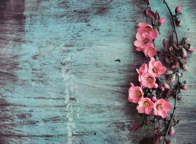 Цветя-Фототапет Mur Colore
