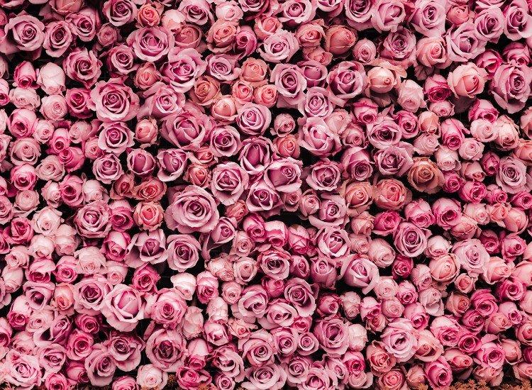 Фототапет Rosas - Фототапети БГ
