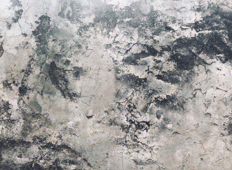 Текстури-Фототапет Rucio
