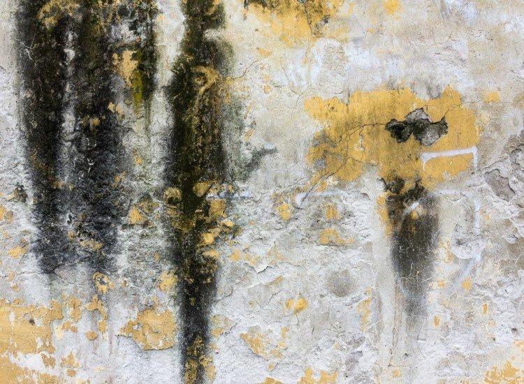 Текстури-Фототапет Croccante