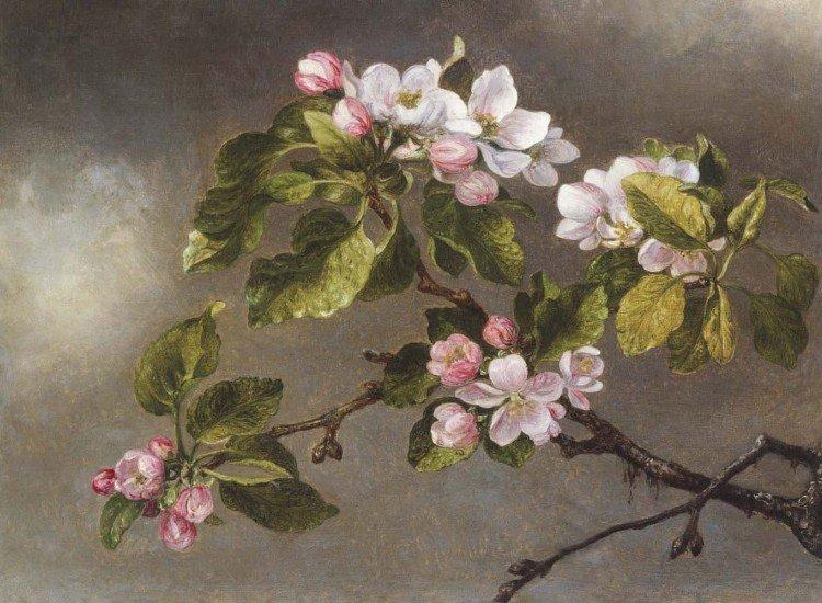 Цветя-Фототапет Цветен клон