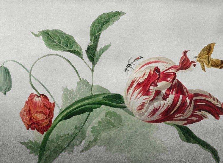 Фототапет Цвете Still Life Flowers - Фототапети БГ