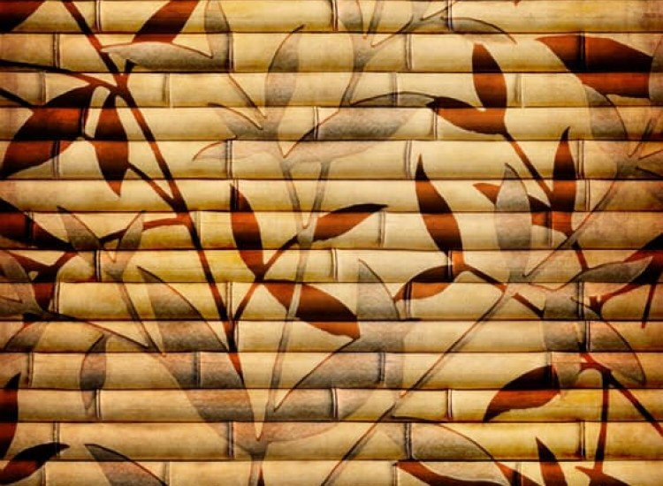 Растения-Фототапет Бамбукова текстура