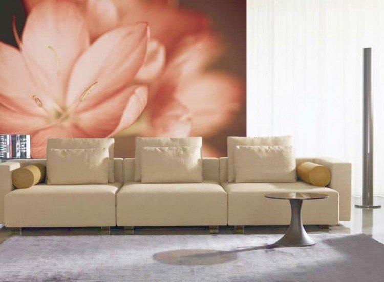 Цветя-Фототапет Нежно цвете