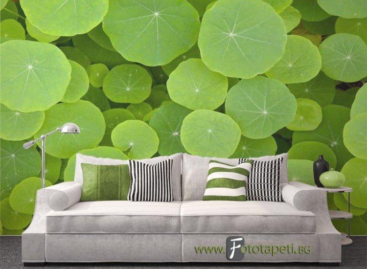 Растения-Фототапет Свежест