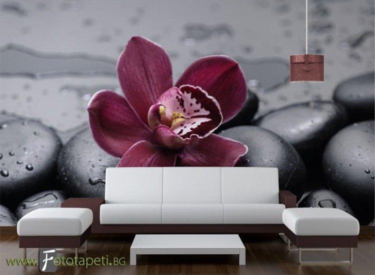 Цветя-Фототапет Стилно цвете