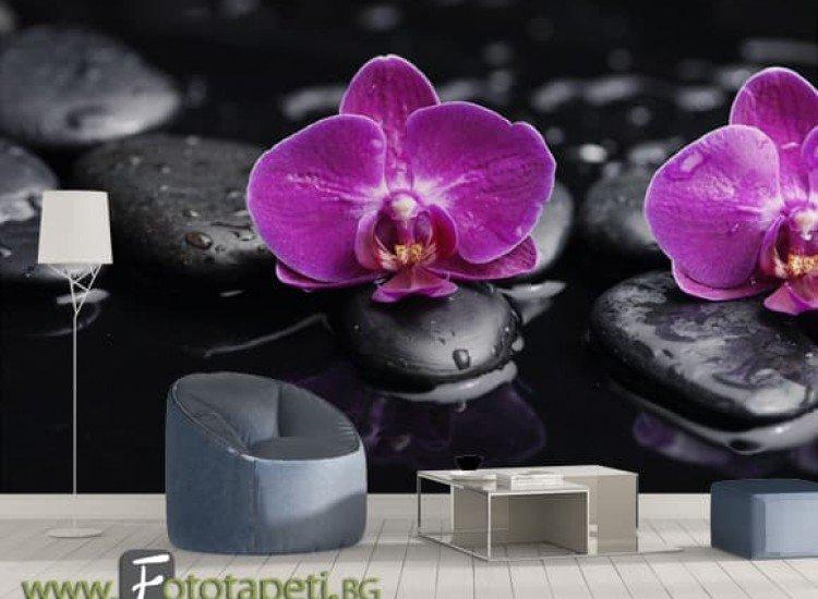Цветя-Фототапет Орхидея