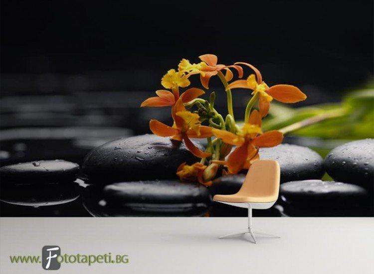 Зен фототапети-Фототапет Цвете върху камък