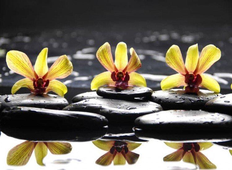 Цветя-Фототапет Цветя