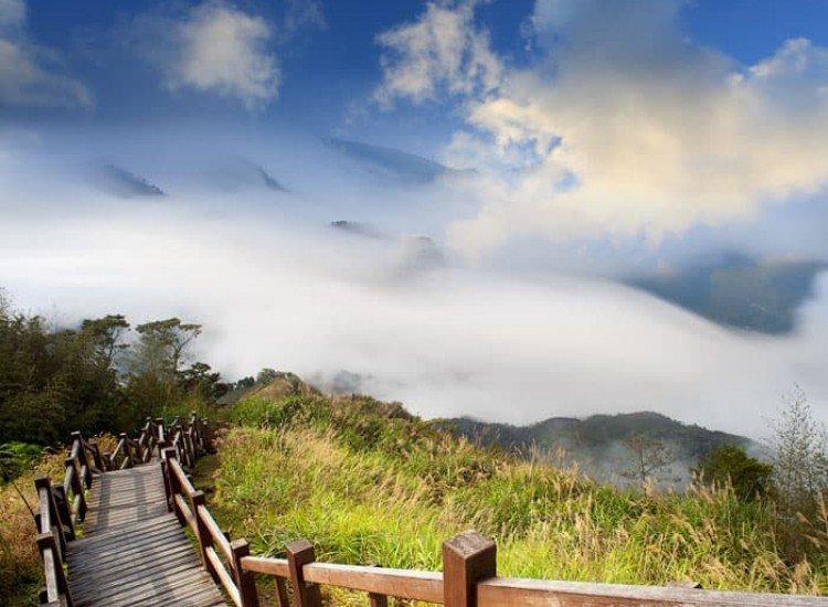 Пейзажи и природа-Фототапет Надолу по пътеката
