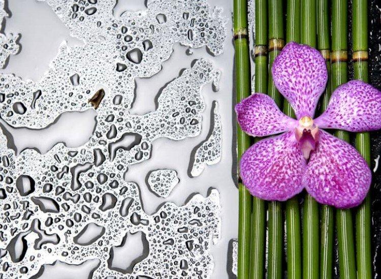 Цветя-Фототапет Орхидея и капки