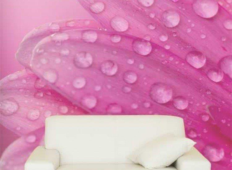 Цветя-Фототапет Розови листа с капки
