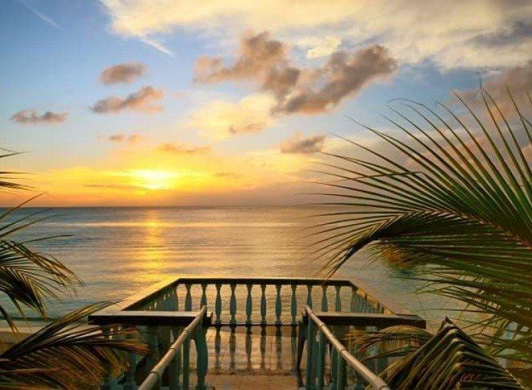 Морски и тропически-Фототапет Гледка от терасата