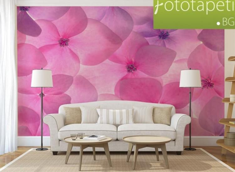 Цветя-Фототапет Фон с розови цветя