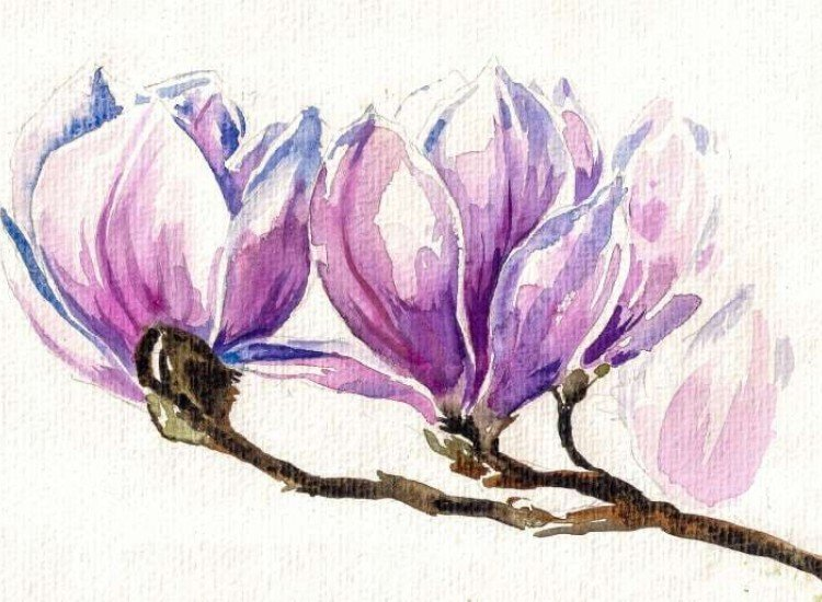 Цветя-Фототапет Магнолиев клон