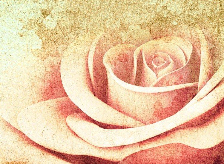 Цветя-Фототапет Текстура и роза