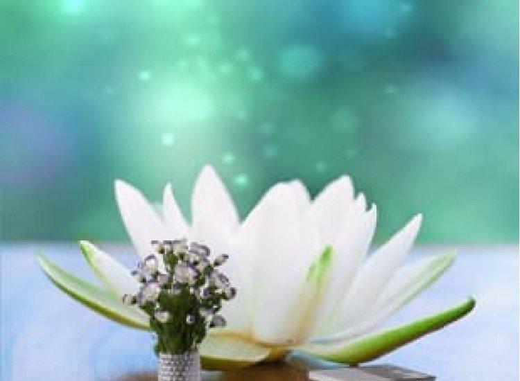 Цветя-Фототапет Бяла Лилия