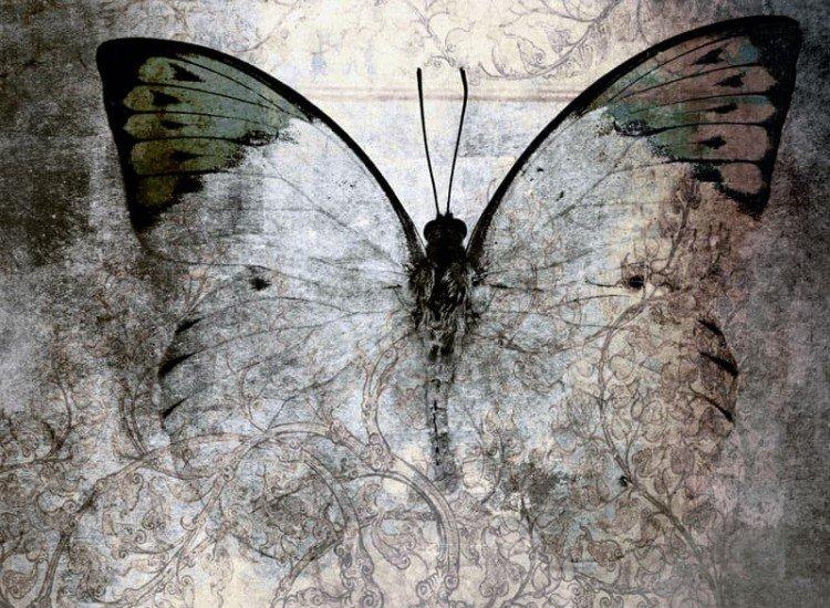 Винтидж фототапети-Фототапет Абстрактна пеперуда