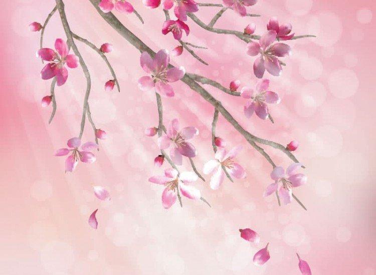 Цветя-Фототапет Клон от японска вишна
