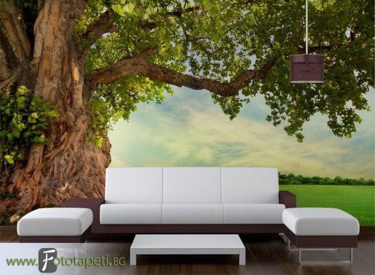 Пейзажи и природа-Фототапет Могъщо дърво