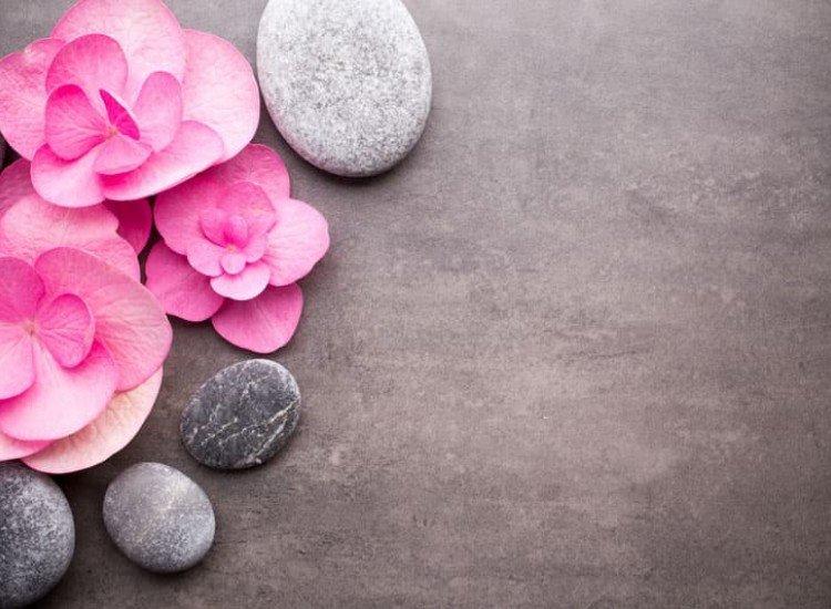 Цветя-Фототапет Фон с камъни и цветя