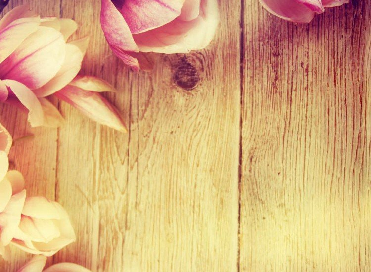 Цветя-Фототапет Клон магнолия