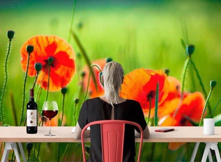 Цветя-Фототапет Диви макове