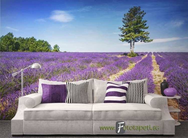 Пейзажи и природа-Фототапет Лавандулово поле в Прованс