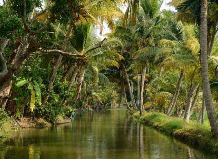 Пейзажи и природа-Фототапет Водите на Керала